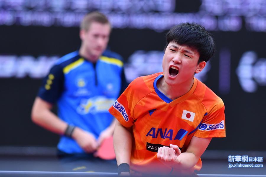 卓球 ワールド カップ 2020