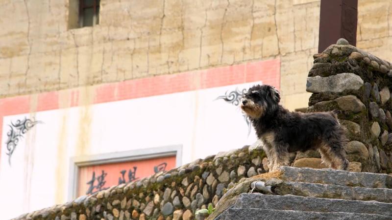 【映像】中国庶民の物語 世界遺産・福建土楼の魅力