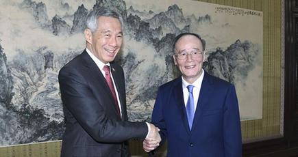 王岐山副主席、シンガポールのリー・シェンロン首相と会見