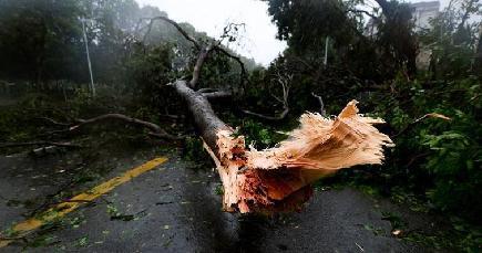 大型で強い台風22号が16日午後に広東省に上陸