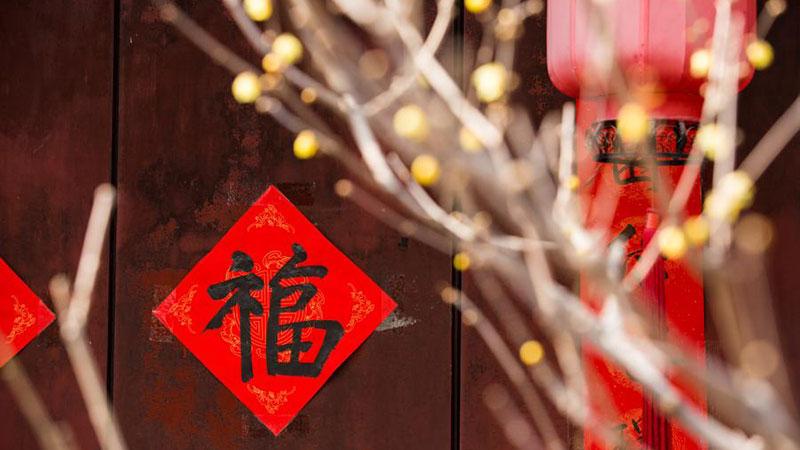 春を告げるロウバイ開花 北京市