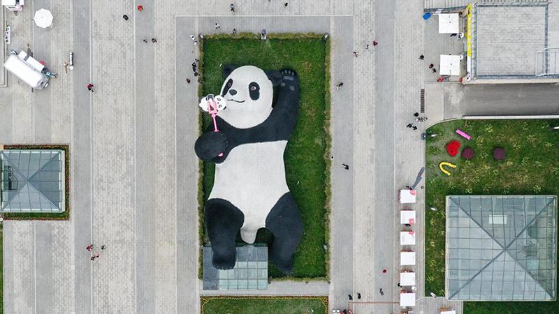 「パンダの都」に新たな人気スポット 四川省都江堰市